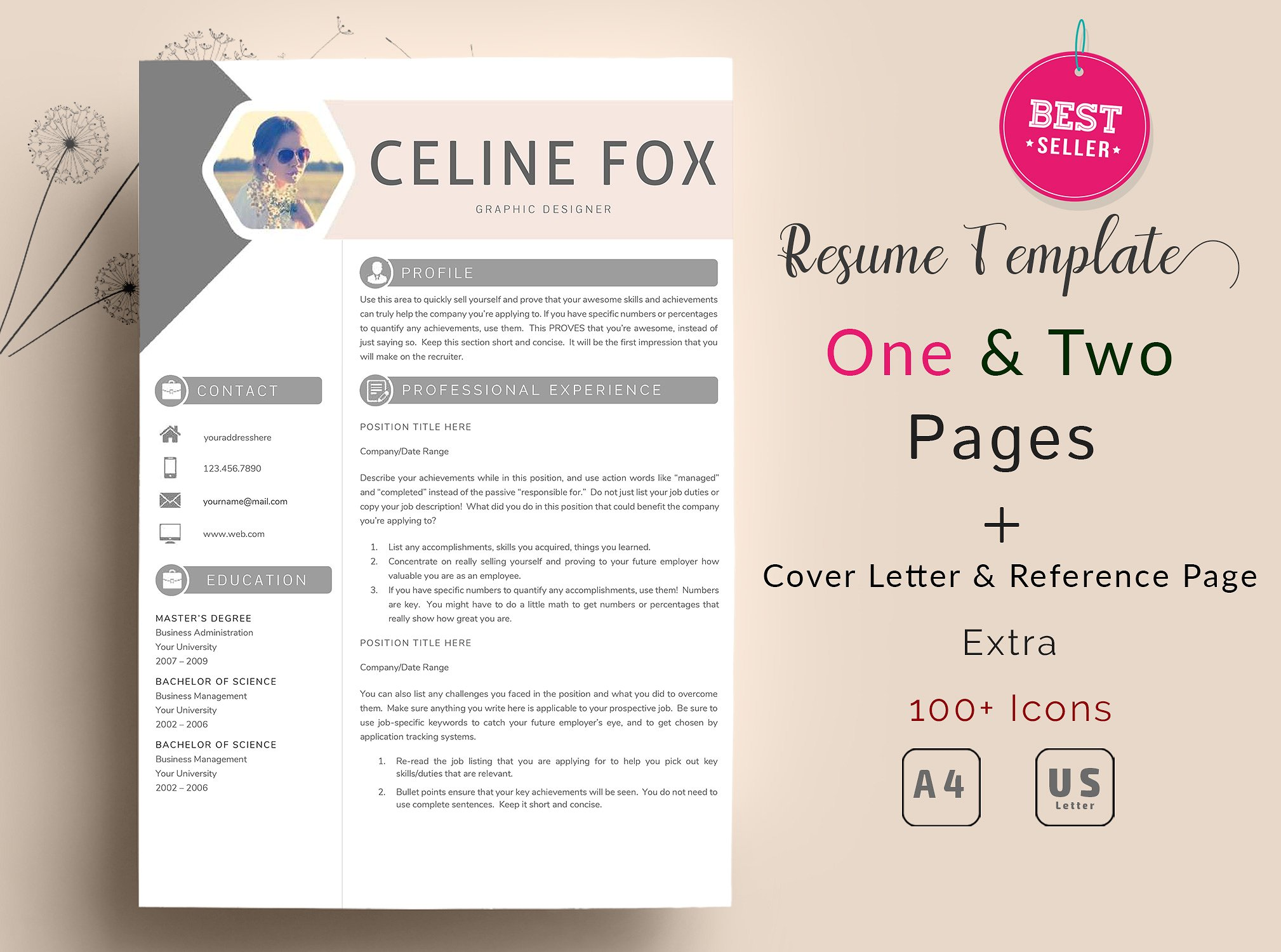 Celine Resume Template 2 Pages