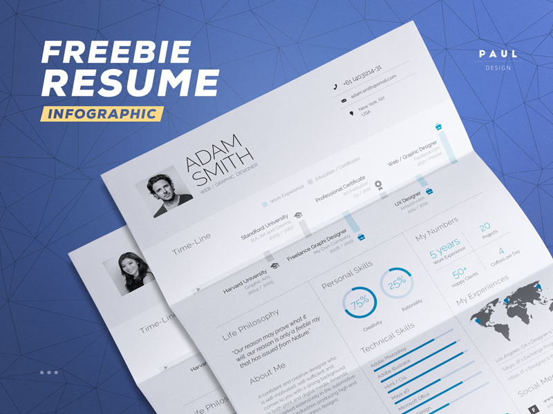Beautiful Infographic Resume INDD DOC