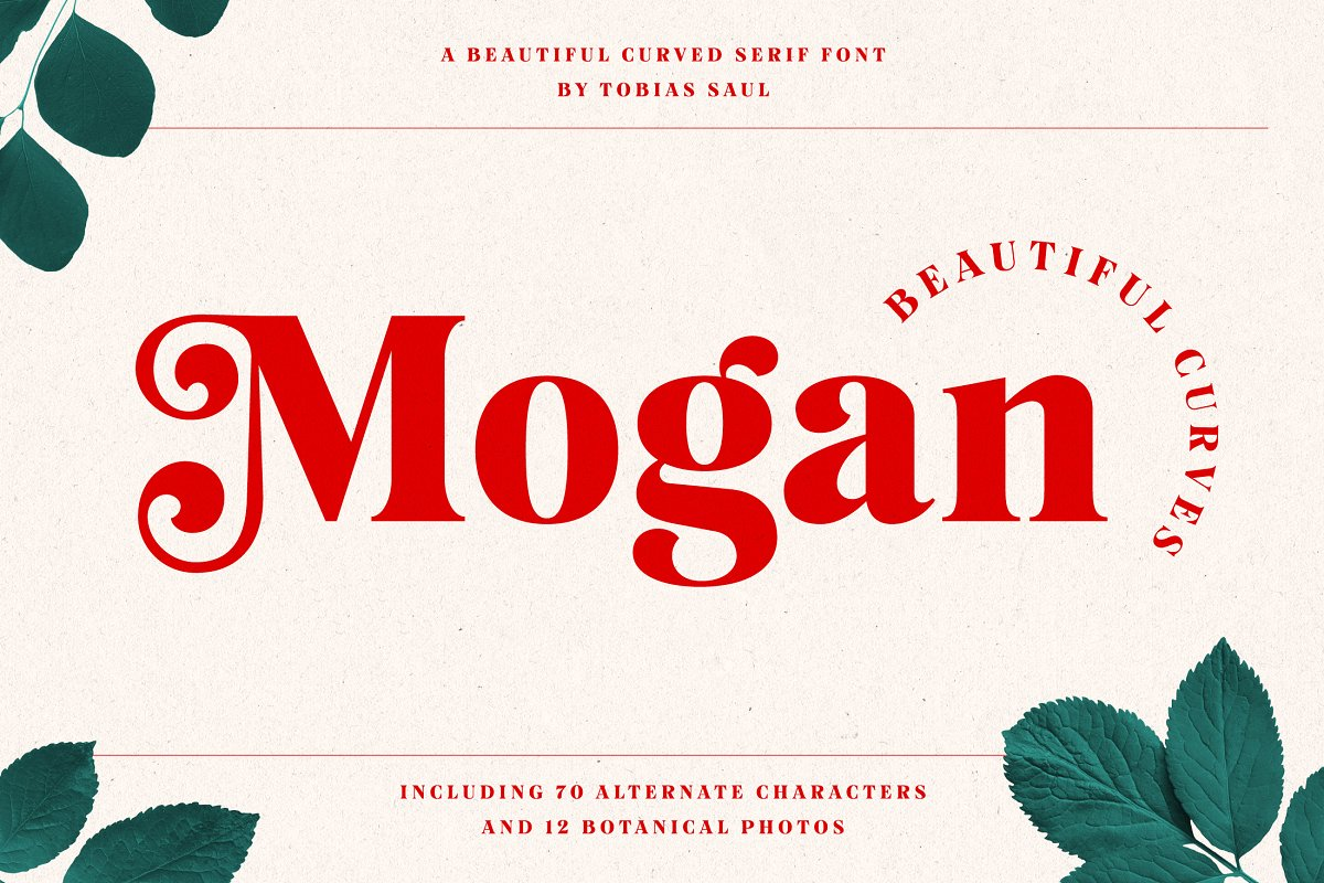 Best Fonts 2020.Top 20 Fonts That Will Be Outstanding For Designers In 2020
