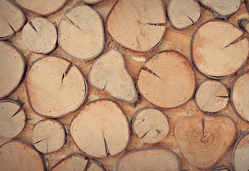35 High Resolution Realistic Wood Texture Packs Decolore Net