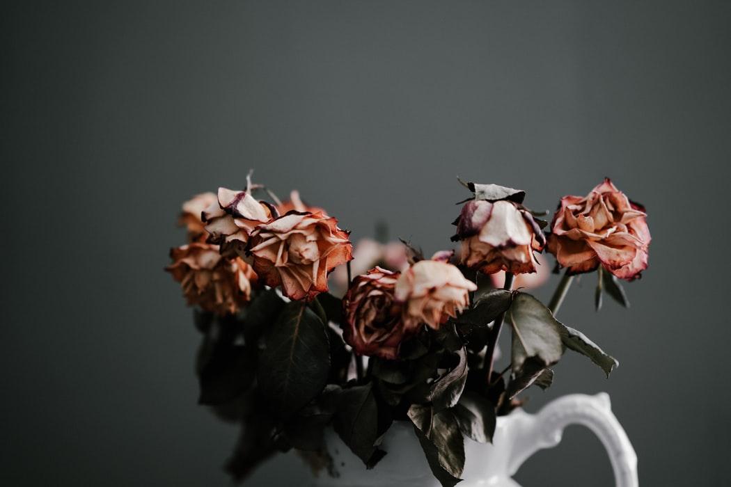 extinct-roses
