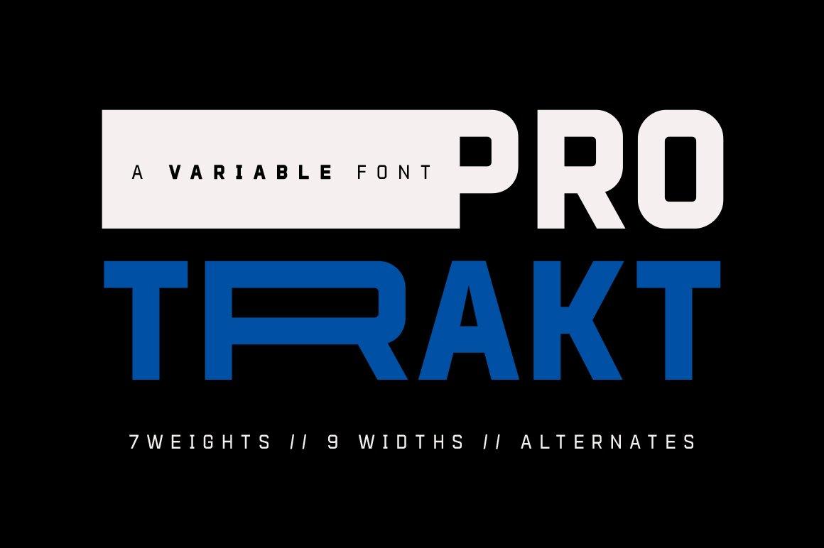 Protrakt-Variable