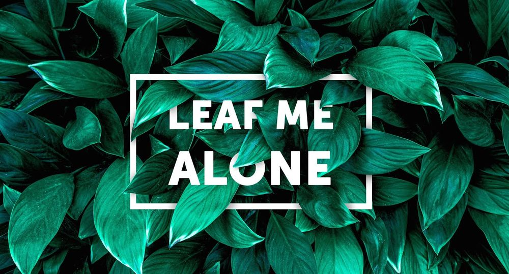 how-to-create-realistic-text-behind-leaves